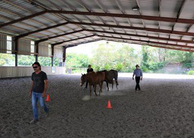 Cowboy Code team activity
